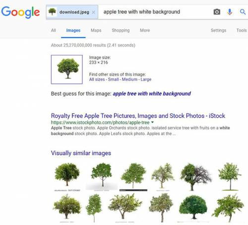 نتایج جستجو بر اساس عکس